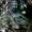 Контрактные двигателя на Toyota Hilux Surf 130 #1337676