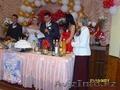 Организация и Проведение Свадьбы. Скидки до 50% !!!