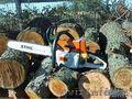 Спил и обрезка аварийных деревьев в Алматы