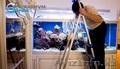 Обслуживание аквариумов морских и пресноводных