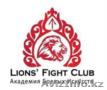 Академия боевых искусств