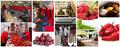 Услуги помощника в приобретении фруктов из Сербии